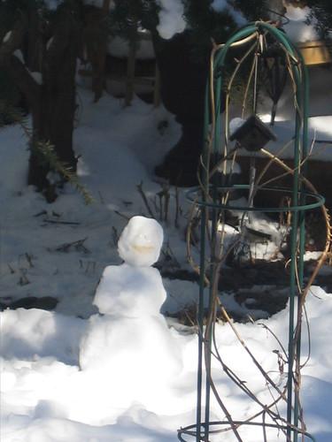 Snowy Day (6)
