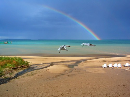 Mackinaw Rainbow