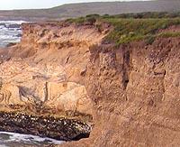 Cliff Banner3