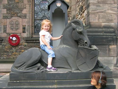gemma_horse