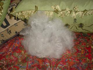 Fluffed Up Shetland Wool