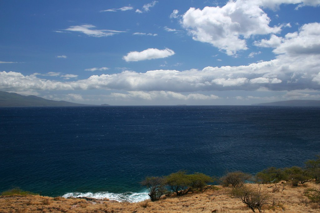 View from Papawai Scenic Lookout