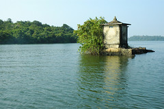Satha Paha Doowa in Madu River (Maadu ganga) in Sri Lanka photo by Dhammika Heenpella / Images of Sri Lanka