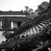 Vietnam-0632 © Bart Plessers