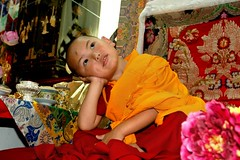 Focusing? photo by Tenzin Phuntsok Rinpoche