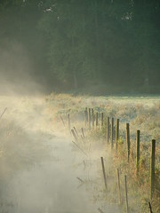 Matin brumeux, gelée blanche / Misty frosty morning photo by OliBac