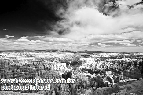 Photoshop infrared conversion tutorial -- B&W infrared sample