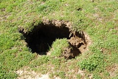 5a. Sinkhole Photo
