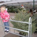 Riding the trolley<br/>24 Nov 2007