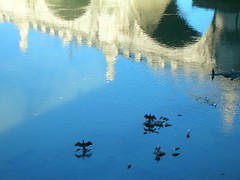 reflets du Pont Saint Ange dans le Tibre