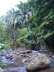 camp site river
