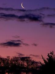 Crescent moon photo by Shutter Man