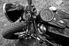 Harley bobber. photo by David N. Sillitoe