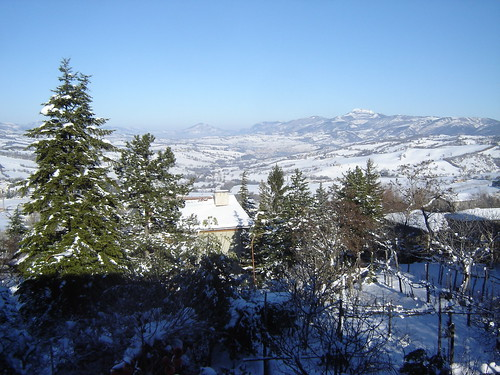 Valley with Snow