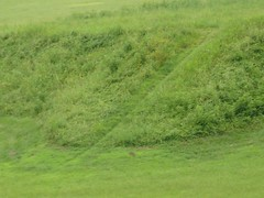 Close-up of steps to smaller mound, Moundville