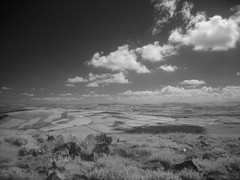 infrared: looking south from Sugarloaf