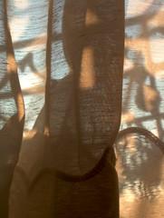 le soeil à travers le rideau