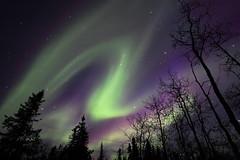Aurora photo by Wolfhorn