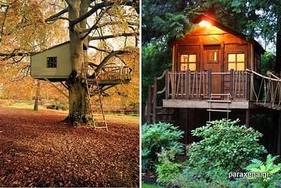 Amazon-Tree-Houses-10