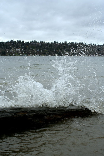 windy day on lake washington
