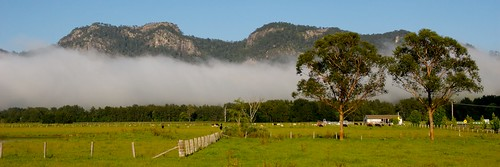fog bank by yewenyi