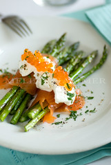 fresh savory photo by mwhammer