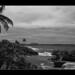 Coastal scene (monochrome)