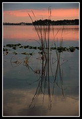 Lake Tarpon After Sunset photo by Waldek & Lidka