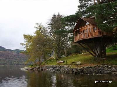 Amazon-Tree-Houses-07
