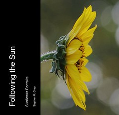 ... Sunflower Portraits (book