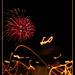 [ Fireworks ]