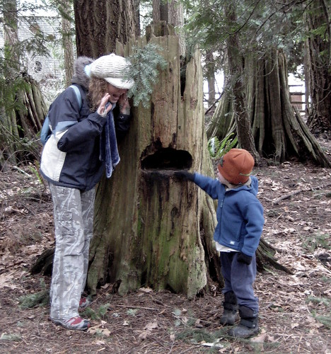 boy eating tree