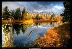 A Fall's morning in Grand Teton photo by Arnold Pouteau's