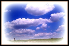 Baby Horses and cloud days... photo by Backroad Drifter