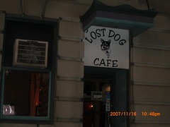 The Lost Dog Cafe in Binghamton, NY