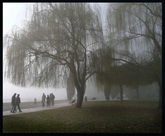 Foggy morning in Riva del Garda photo by derhur