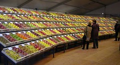 Tutto Mele wall of apples 05.jpg
