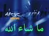 2441043243_bd898dfdb7_t