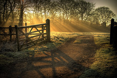 Sun's Rays and a Gate photo by -terry-