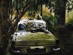 Urban Decay photo by Fadi Asmar ^AKA^ Piax