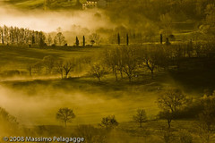 Brume in Toscana 1 photo by Massimo Pelagagge