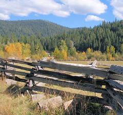 20071014 Fall at Mill Creek near Lassen