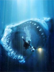 Megalodon / Diving this weekend? photo by Arne Kuilman