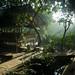 Vietnam-0901 © Bart Plessers