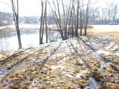 pond1-lo.jpg