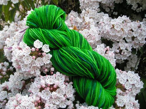 Dye o rama yarn 1