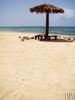 [ Farasan's Beach ]