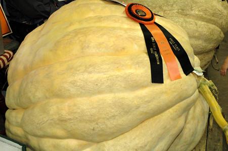 840-lb. Pumpkin