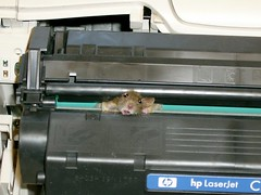 mouse-printer3