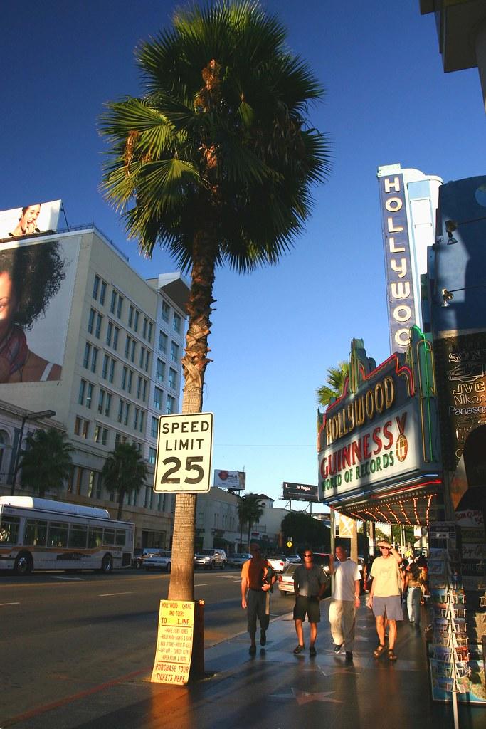 Fredericks Of Hollywood Long Beach Office Location